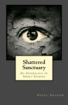 1 1 front cover shatteredsanctuary
