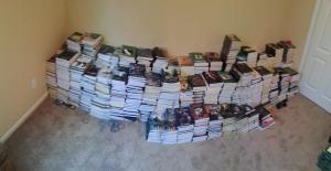 A fraction of this year's book donations.