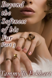 beyond_the_softness_3_cover_750