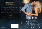 40242-moon-full
